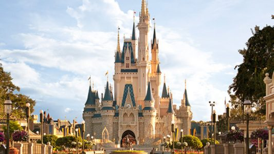 Special Needs Vacations - Disney Delight