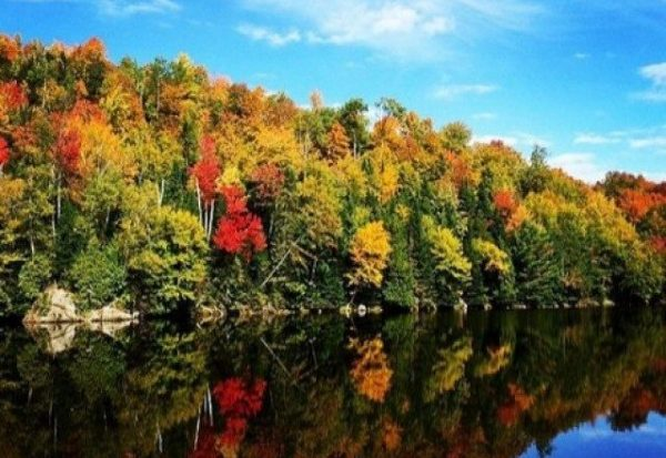 General Public Vacations - Fall Foliage – Vermont & Niagara Falls