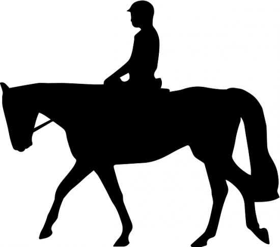 Image of horseback rider.