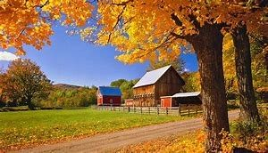 Image of Farm with Fall Colors
