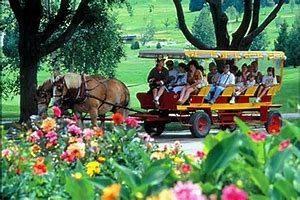 Image of horse-drawn wagon.
