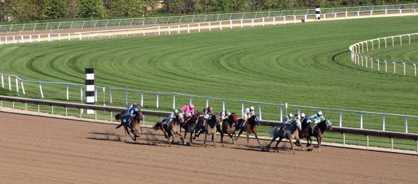 Image of horse racing