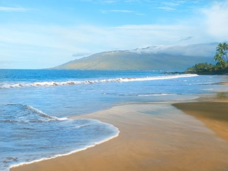 Image of Hawaiian Beach