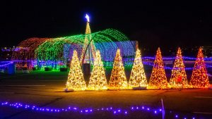 Image of Christmas Lights scene.